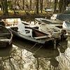 Boat Friday