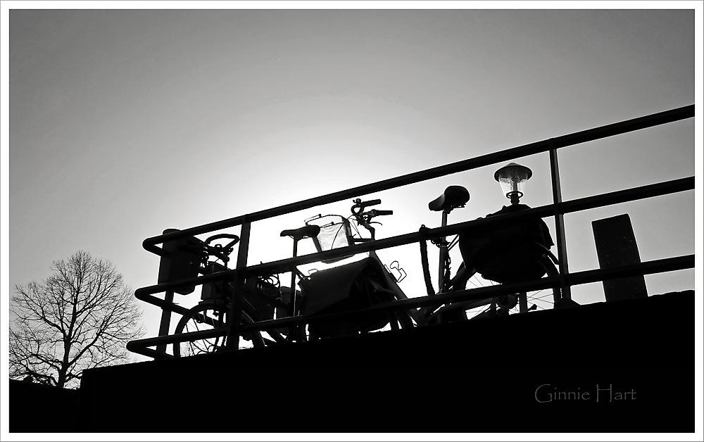 photoblog image <s>Boat</s> Bike Friday