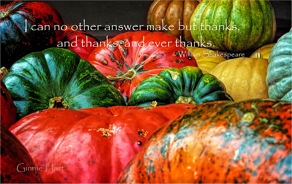 photoblog image Happy Thanksgiving