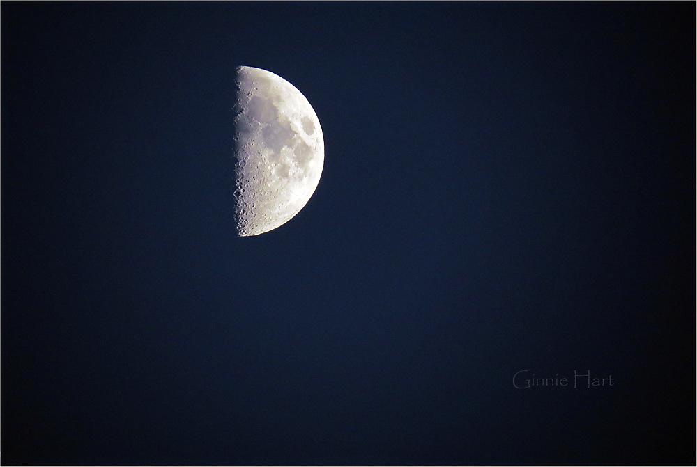 photoblog image Half a Moon...