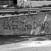Live the Dead Alone