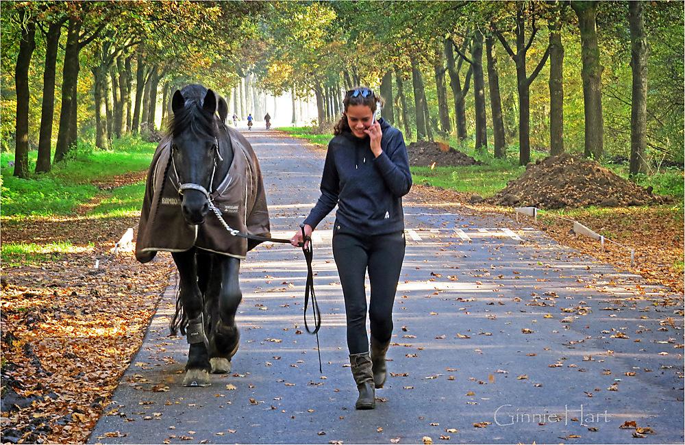 photoblog image <s>Bike</s>  Horse Friday