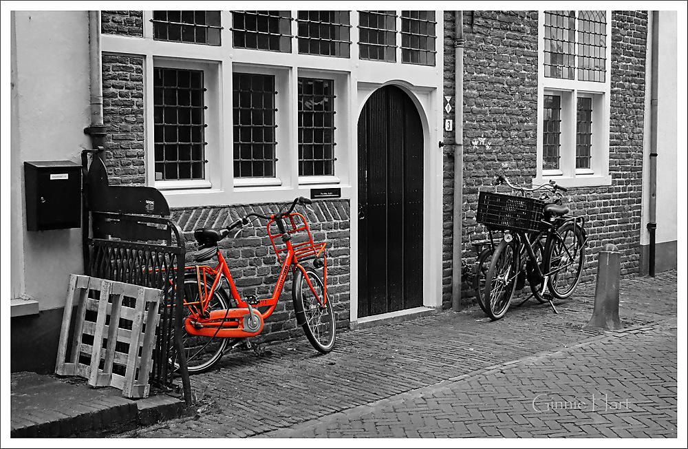 photoblog image Bike Friday