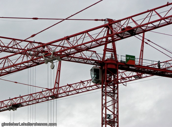 photoblog image Got Crane?