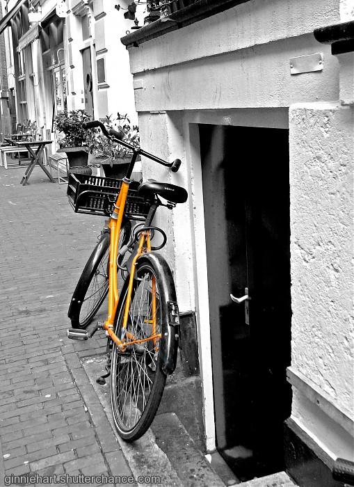 photoblog image The Ubiquitous Bike