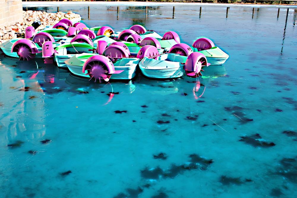photoblog image Estanque helado