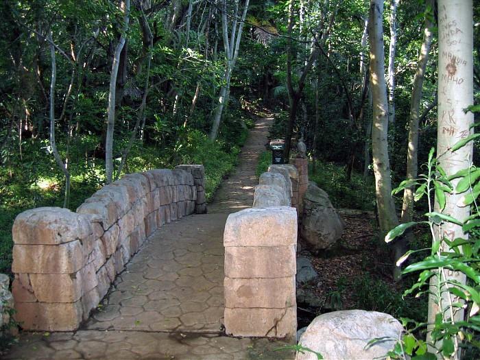 photoblog image bridge in forest