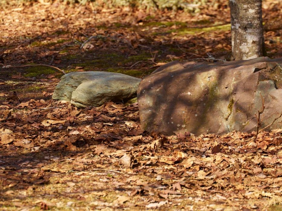 photoblog image rocks and shadows