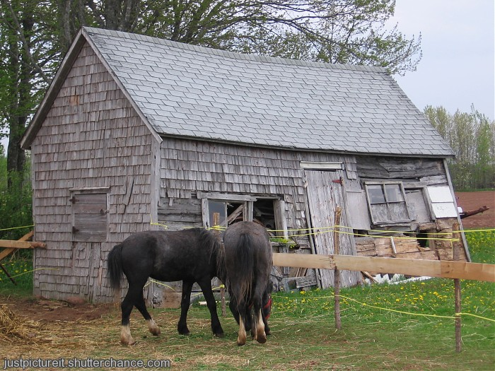photoblog image Poverty