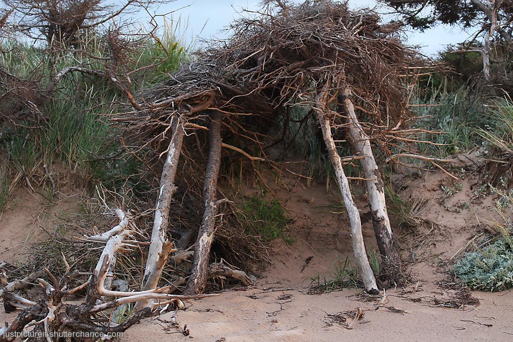 photoblog image Beach Structure on PEI