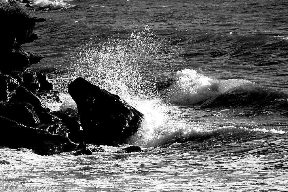 photoblog image Splish and Splash