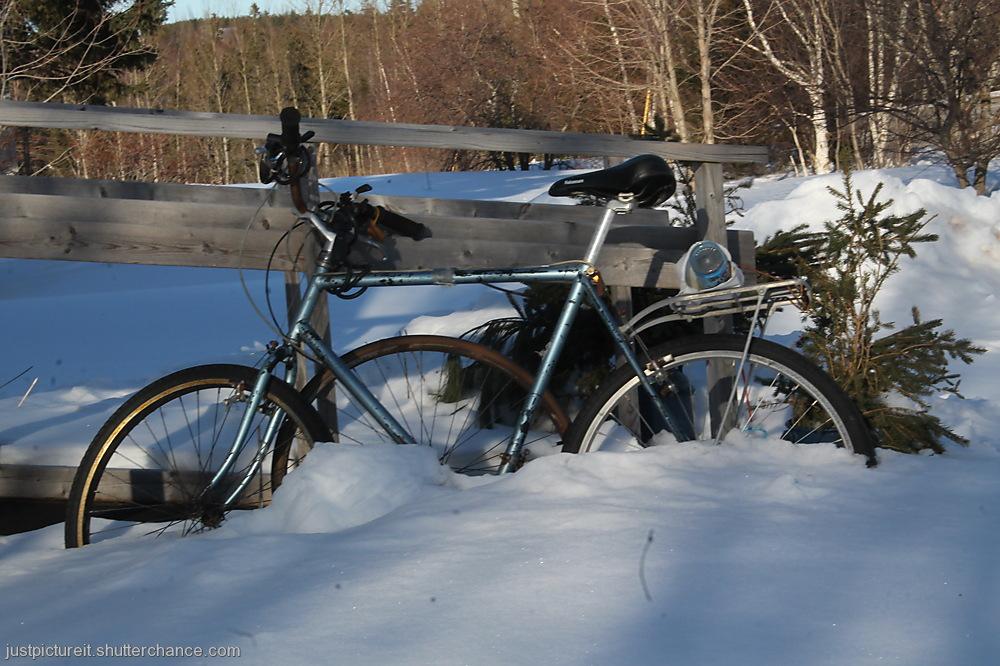 photoblog image Cold Bicycle