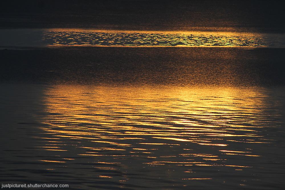 photoblog image Molton Sunshine