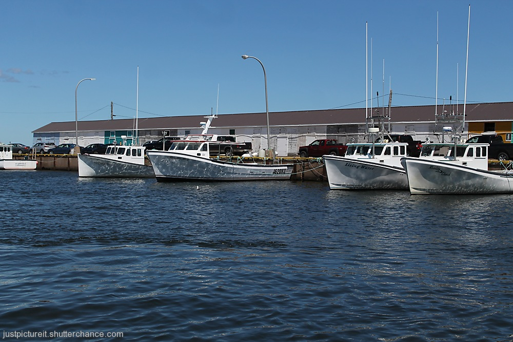 photoblog image Sea Shanty Day