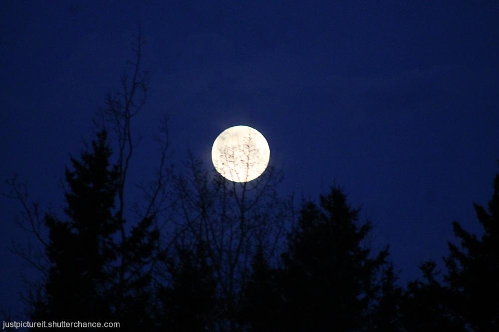 photoblog image Beneath the Matla Moon