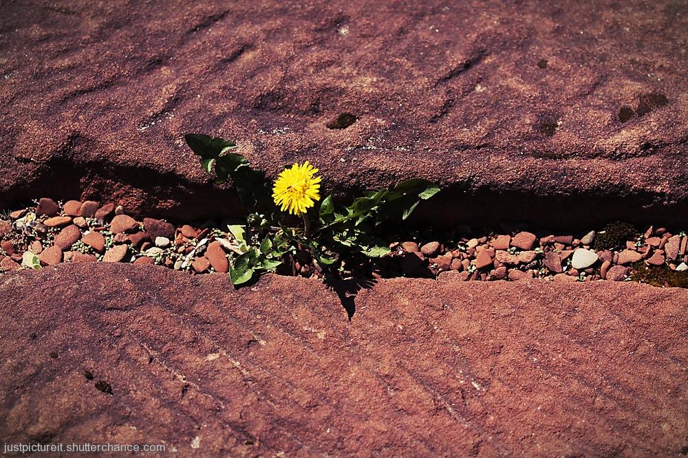 photoblog image Another Round