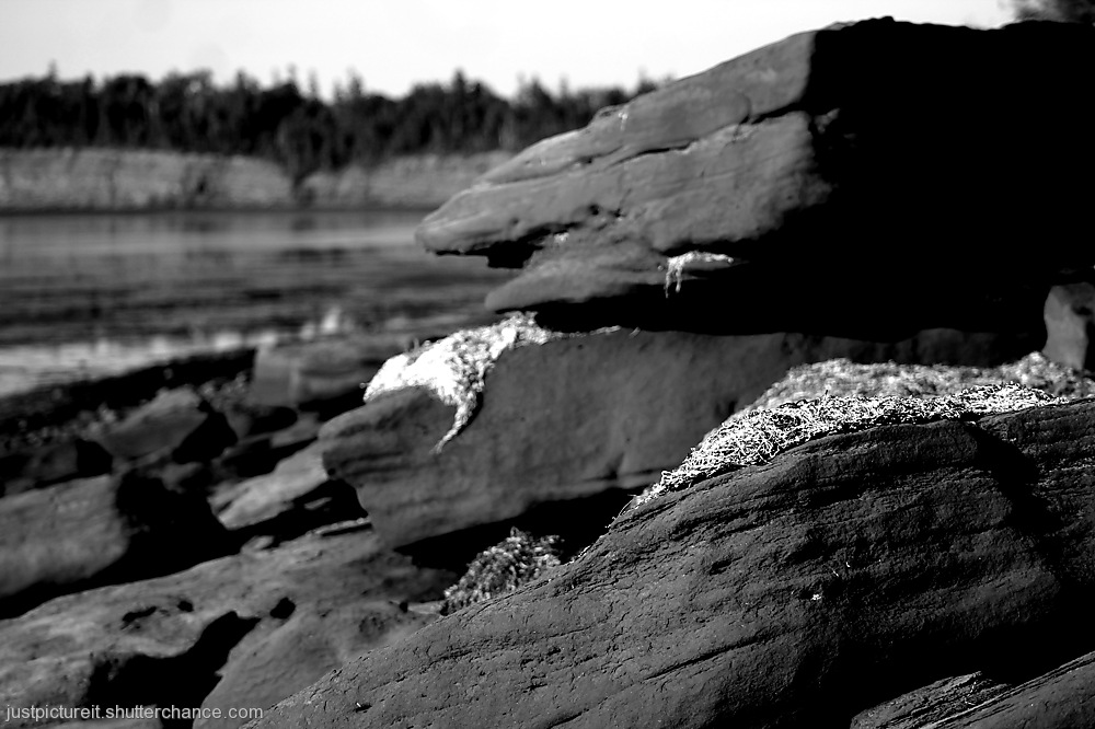 photoblog image Beach Day