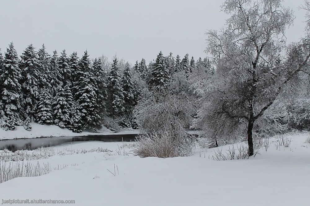photoblog image Snow Day 3
