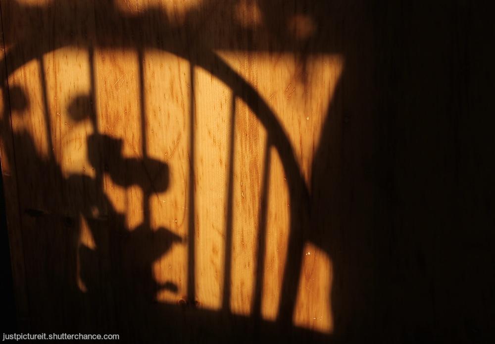 photoblog image Light and Shade