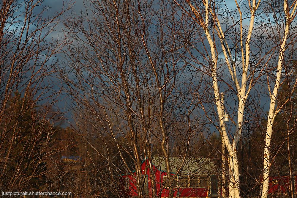 photoblog image Evening Time