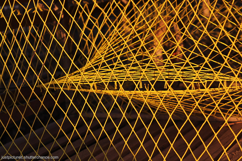 photoblog image Trapped Yellow
