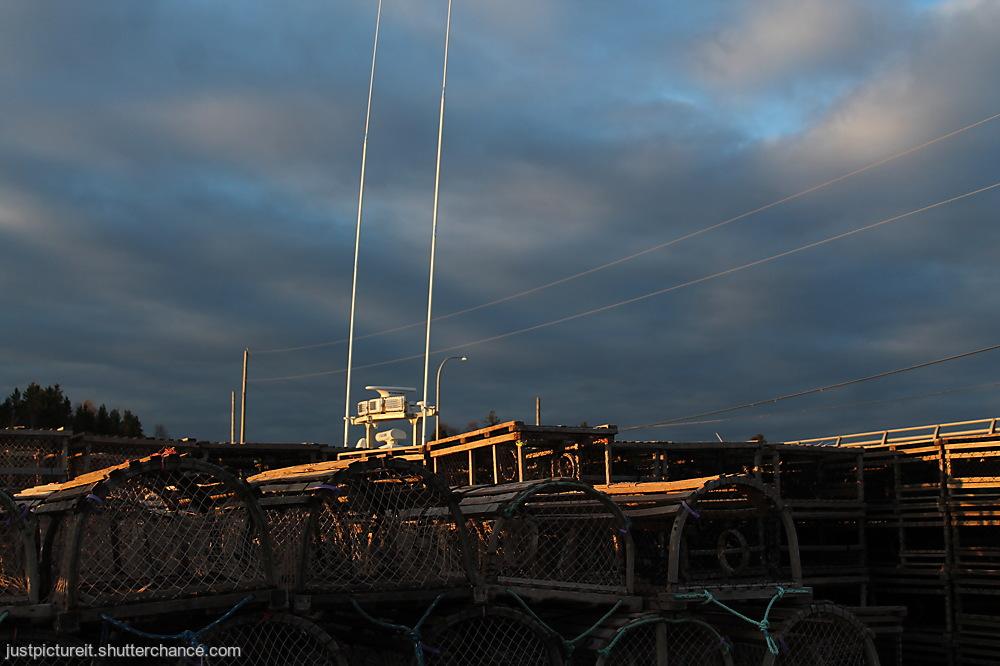 photoblog image Friday Filler