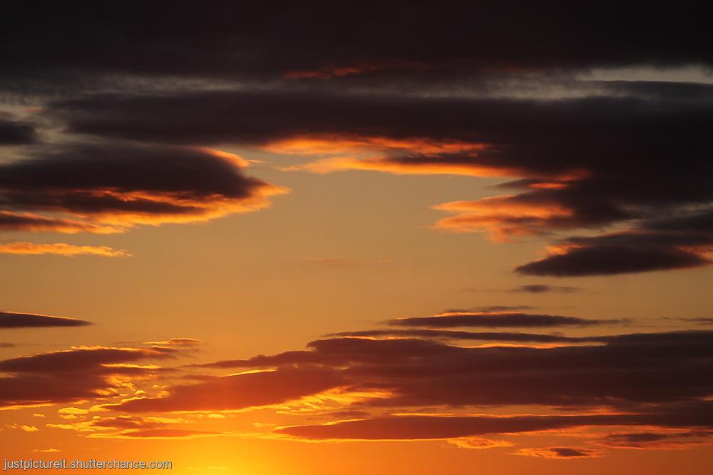 photoblog image Special Sunday
