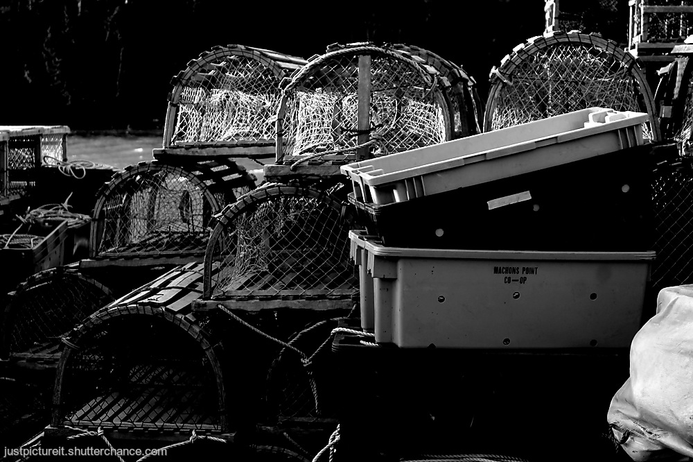 photoblog image Lobster Trappage