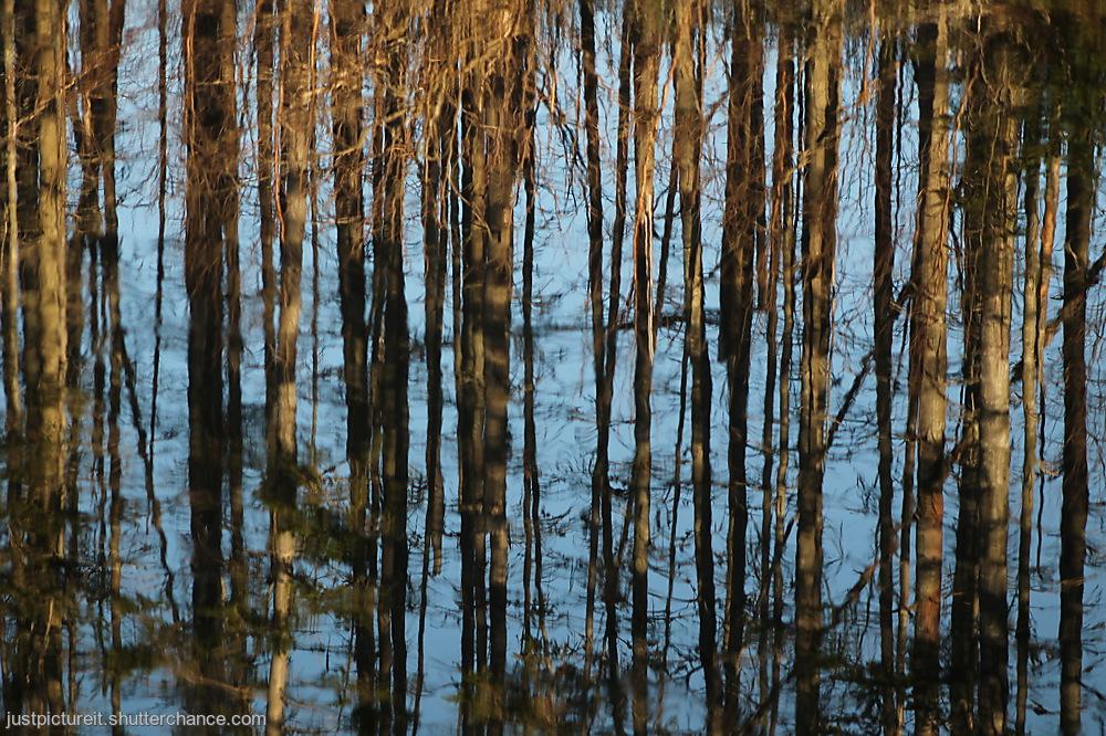 photoblog image Change It Up
