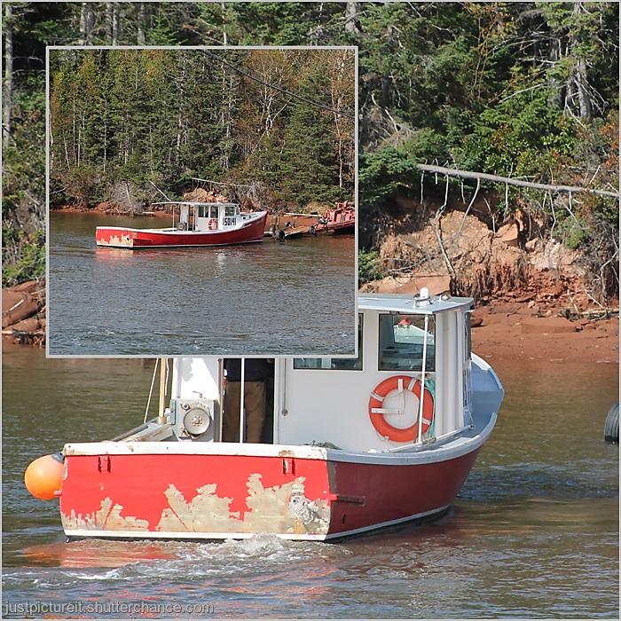 photoblog image Charlie's Ark
