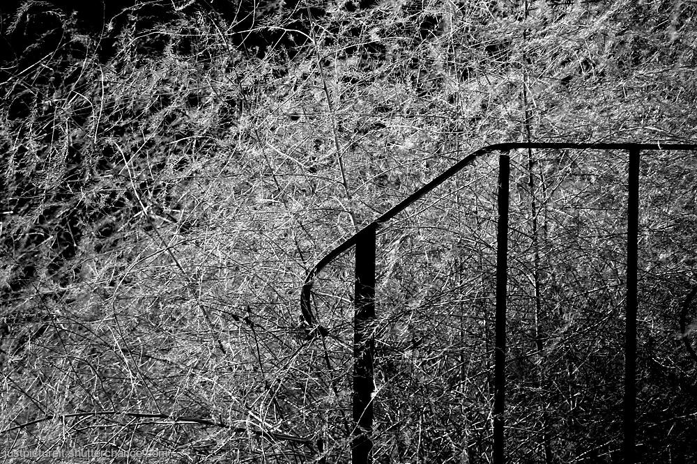 photoblog image Not Monday