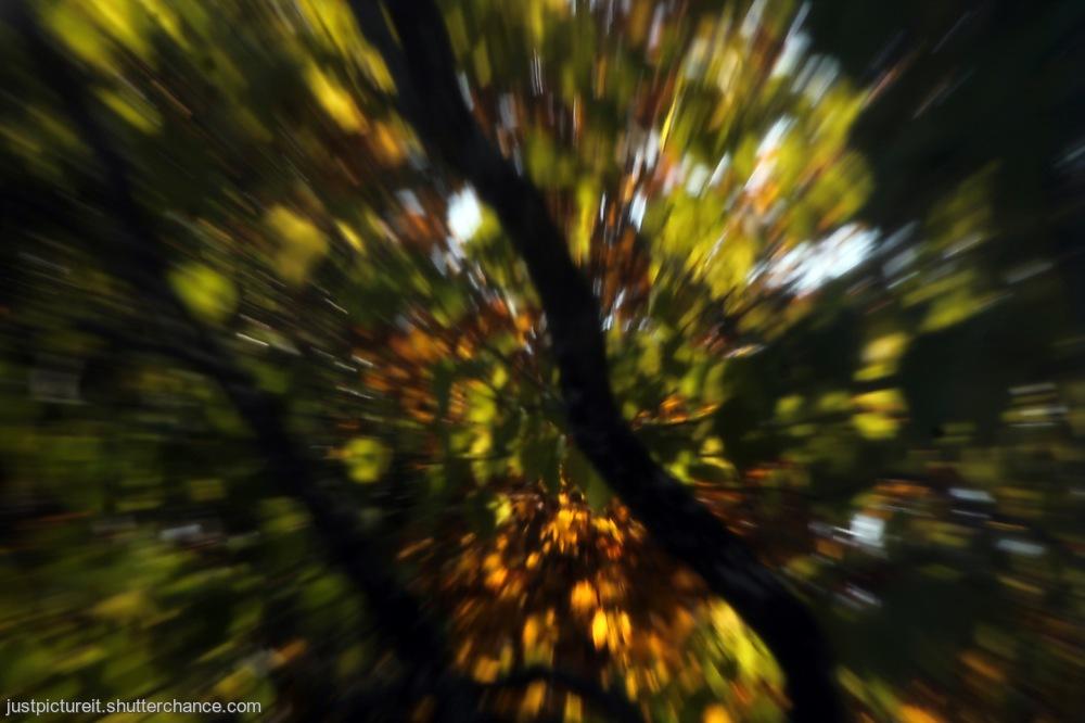 photoblog image October Time
