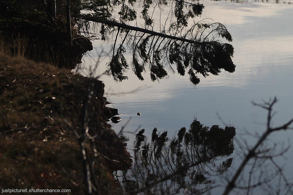 photoblog image River Reflections 6