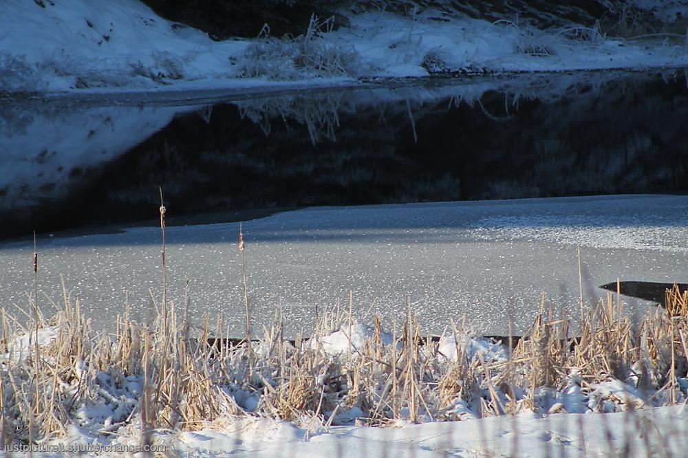 photoblog image Winter Scenes
