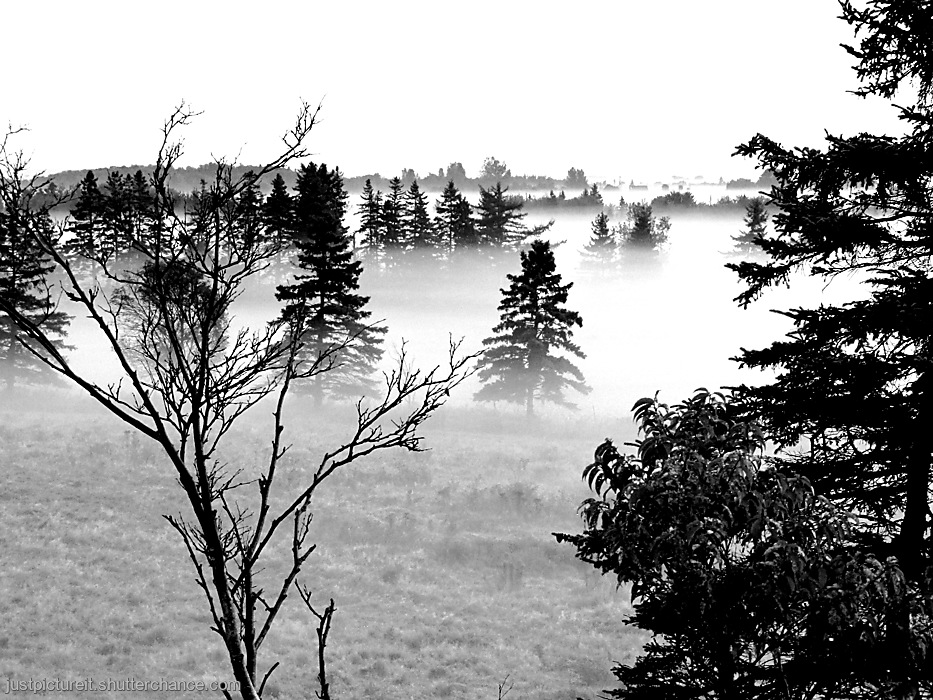 photoblog image Another Misty Monday