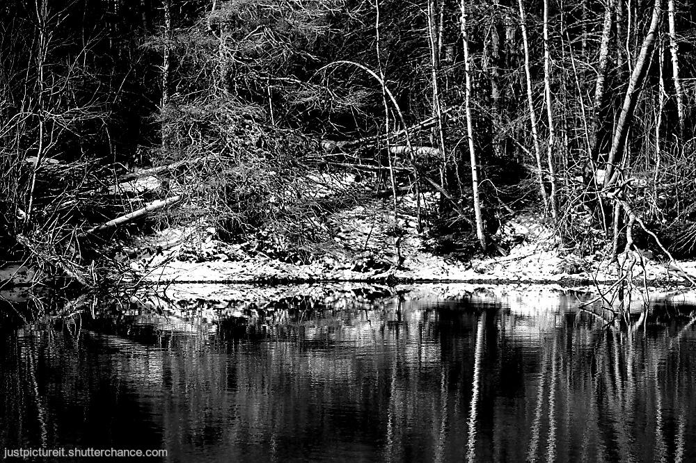 photoblog image Mono Monday