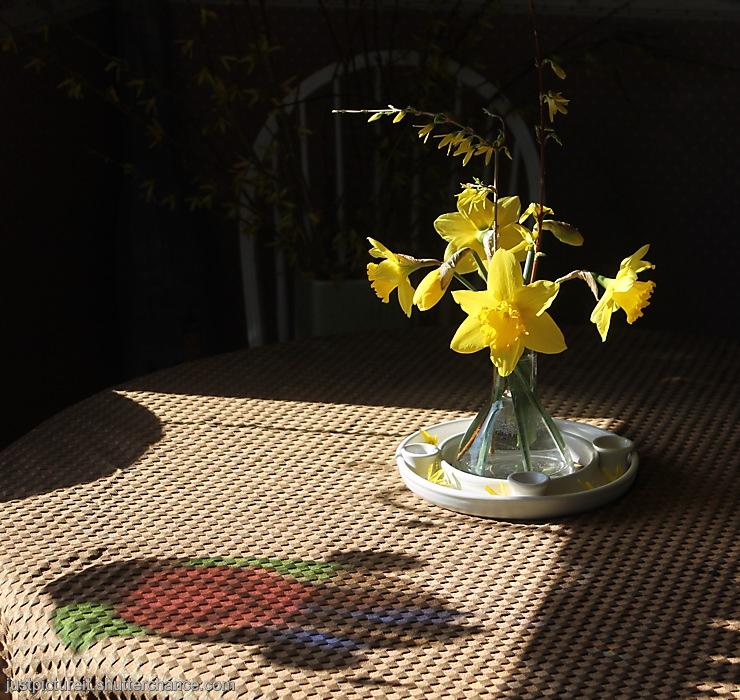 photoblog image Friday Flowers