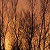 Spectacular Saturday Sunset