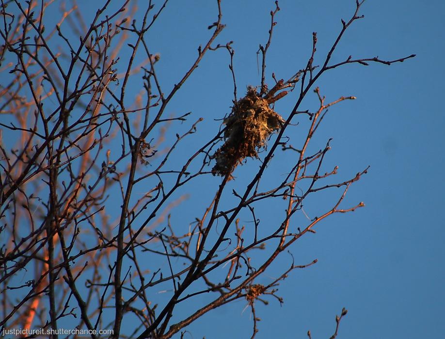 photoblog image Abandoned