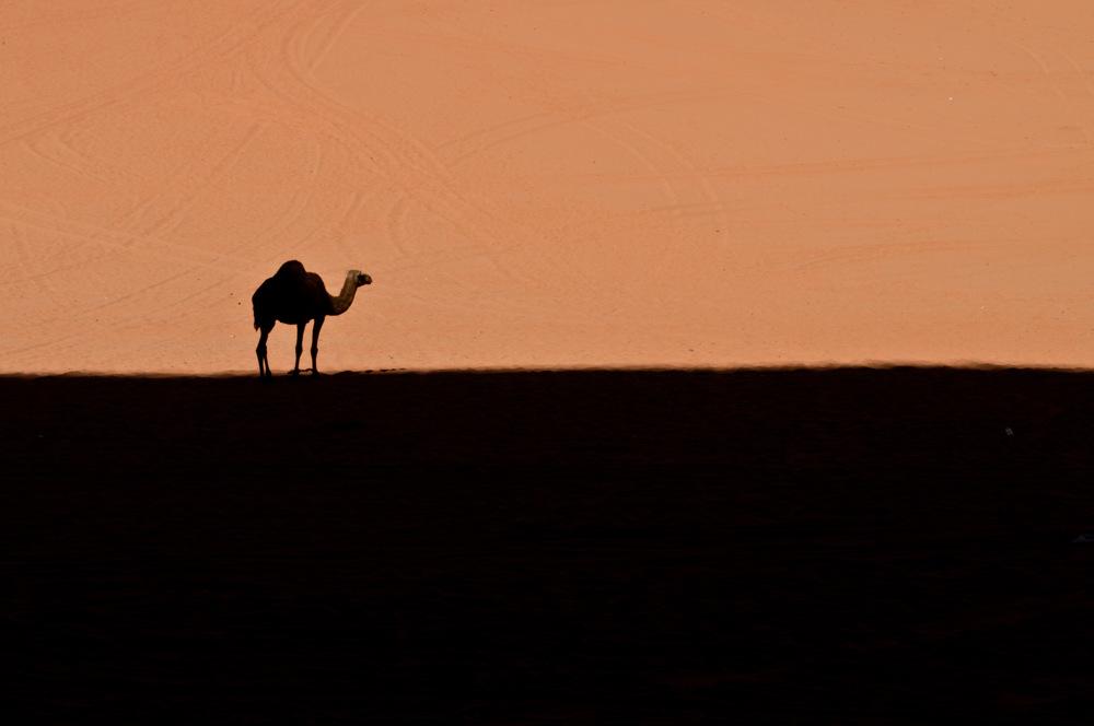 photoblog image wadi rum