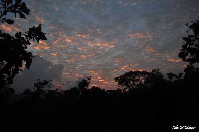photoblog image Blue skies and Sunshine...