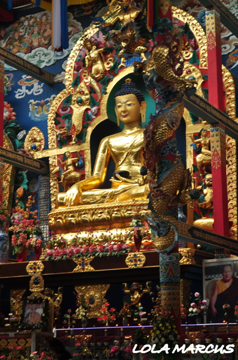 photoblog image Golden Temple of Buddha....