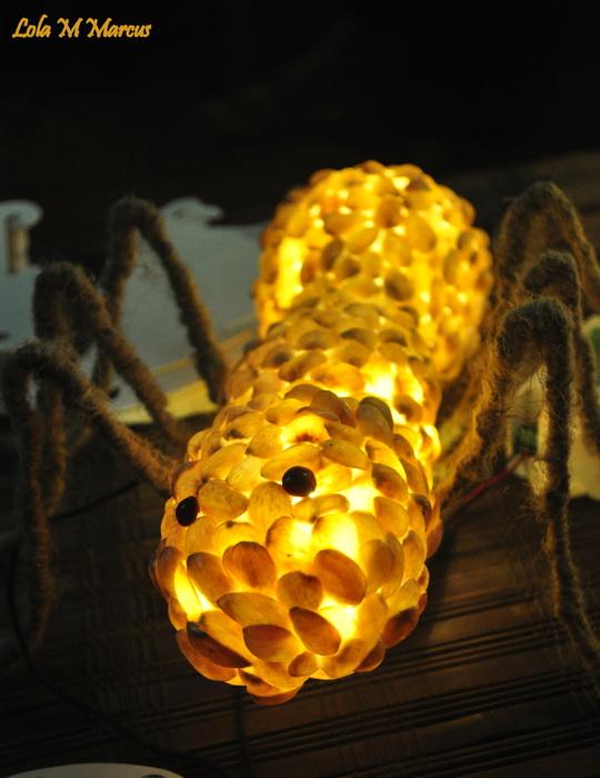 photoblog image Itsy Bitsy spider...