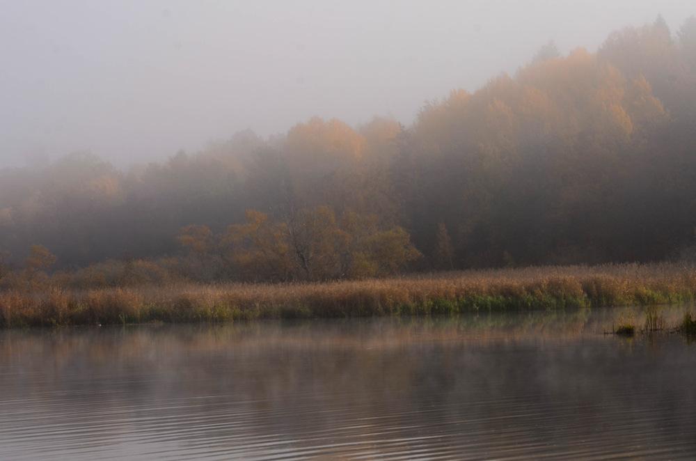 photoblog image Morgon - Morning