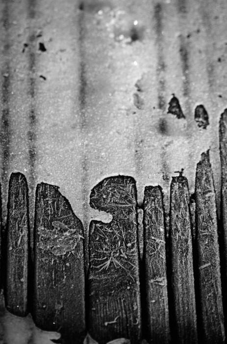 photoblog image Is & trä - Ice & wood