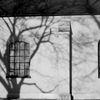 Skuggor - Shadows