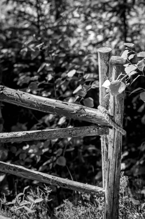 photoblog image Grind - Gate