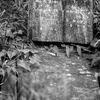 Gravsten - Headstone