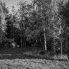 Stuga - Cottage