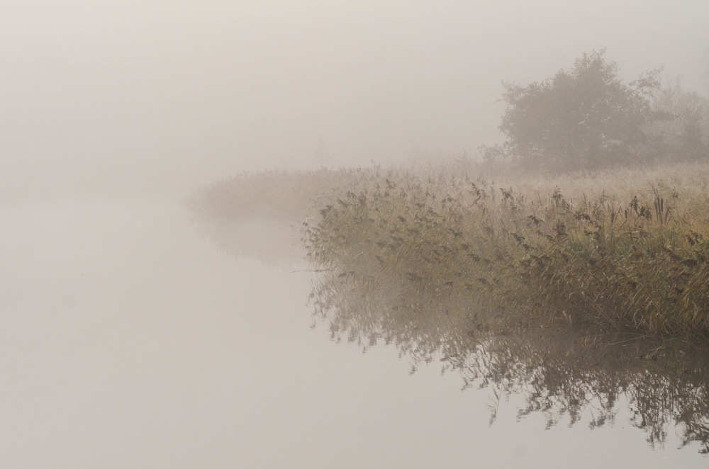 photoblog image Dimmig morgon - Misty morning